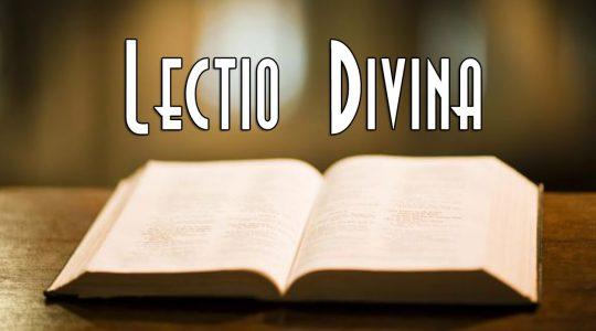 Al via il percorso dei lunedì con la Lectio divina quaresimale.